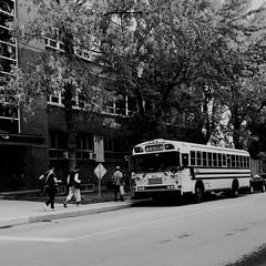 Une dur journée de travail... (woltarise) Tags: streetwise outremont quartier montréal circulaires publicités travail porteàporte autobus scolaire iphone7