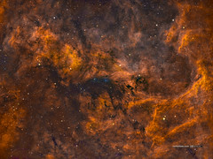 Reflexion Nebula NGC6914 in HSOrgb widefield (Carballada) Tags: astrophotography astronomy deep space astro celestron zwo as1600mmc skywatcher ts sky qhy qhy5iii174 pixinsight galaxy galaxies astrophoto astrometrydotnet:id=nova2763195 astrometrydotnet:status=solved