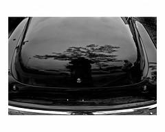 Trunk of a collector's automobile (Richard C. Johnson: AKA fishwrapcomix) Tags: leicaq leitz28mmsummiluxf17 blackandwhite bw monochrome carshow reflections selfportrait chrome chevrolet tomwolfe thekandykoloredtangerineflakestreamlinebaby classiccar carporn detroit motown motorcity streetrod fins detroitwheels people outdoor grandavenue madeintheusa collectors spritivalleydays duluth minnesota summer sunday whithergoestthouamericainthyshinyautomobileinthenight icamesofarforbeauty sictransitgloriamundi