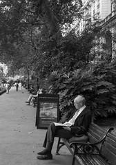 the newspaper (=Mirjam=) Tags: sonyrx100iii london bw street reading park augustus 2018