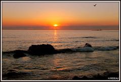Coucher de soleil -  Ile de Noirmoutier (Les photos de LN) Tags: sunset iledenoirmoutier paysage nature rocher lumière couleurs horizon loire vendée