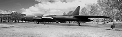 The real McCoy (crusader752) Tags: usaf usairforce boeing b52d stratofortress 560687 preserved orlando internationalairport mccoyafb bomber sac buff biguglyfatfella
