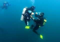 0726_14 (KnyazevDA) Tags: disability disabled diver diving undersea underwater ddi handicapped wheelchair amputee
