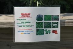 IMG_7901 (giddyup2002) Tags: grantsviewcommunitygarden grantsviewgarden communitygarden garden stlouis