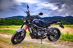 俺 の XSR900 - 9 (Cheng-Xun Yang) Tags: xsr900 yamaha xsr mtm850 バイク ヤマハ motorcycles