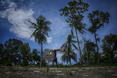 DSC_6279 (Rasel Rony) Tags: ngc bangladesh beautifulbangladesh beautiful street streetphotography streetphotographybangladesh