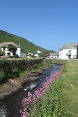 boscastle46 (West Country Views) Tags: boscastle cornwall scenery