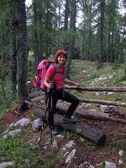 Ob poti / On the path (Damijan P.) Tags: hribi gore mountains hiking slovenija slovenia ksa kamniškosavinsjkealpe kamniksavinjaalps velikivrh velikazelenica križevnik prosenak