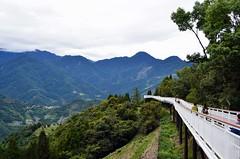 南投 清境天空步道 (Dean Yu) Tags: 南投 仁愛鄉 清境天空步道 清境天空之橋