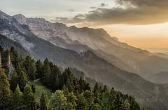 capvespre (Josep M.Toset) Tags: arbres bosc camí catalunya contrallum d800 nikon josepmtoset paisatges posta·de·sol roques prepirineus alt·urgell prat·daguiló nikon24120mm3556gedvr