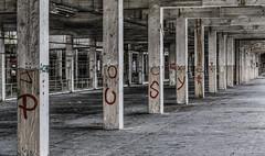 Jocker pusy (oliv86) Tags: abandon lost decay batiment industriel atelier graf grafitti street art urbex a7 longueur verriere france étage vieux ancien barre escalier porte poteau jocker tag squatt fete zone area béton old