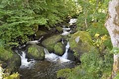 _DSC3881 (SLVA49) Tags: agua musgo arboles rocas verde vegetación nikon df 35mm iso300