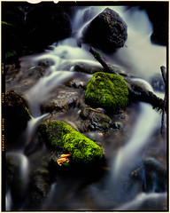 Moss Covered Rocks (benjaminking1) Tags: rock moss creek waterfall 4x5 film green nature texture rocks cold geology peaceful wet boulders fresh movement landscape river outdoors rugged environment color action flow down trees spring cascade forest woods branches dry run velvia large format schneider kreuznach symmar long exposure