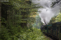Younglings (nrvtrains) Tags: westvirginia cass logging cassscenicrailway shay steam durbin unitedstates us