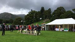Rydal Show
