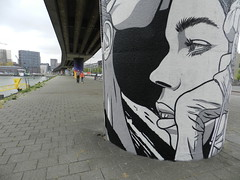 ROAR/6/ Tussen Rijn- en Maashaven (JoséDay) Tags: rijnhaven maashaven rotterdam bierenbrood graffitiproject streetart street people city walkingaround nederland zwartwit blackwhite