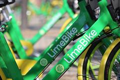 LImeBike Launch-13