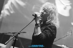 Cervenik_sobota-100