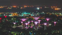 Hotel Room Views 1 (brykyoung) Tags: singapore garden night lights marina bay summer 2018 asia