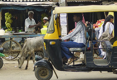 Traffic (Beegee49) Tags: street taxi cow people stall vendor bangalore india