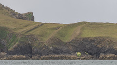 The Rumps Fort.... (Air Frame Photography) Tags: padstow cornwall jaws photography nikon d500 jublie queen camel sea 2018