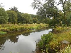 DSCN5563 (norwin_galdiar) Tags: bretagne brittany breizh finistere monts darrée nature landscape paysage