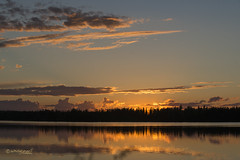 FIRST DAY OF SUMMER 2018 (Wade.J.) Tags: sunset sunny calm reflection beauty lake pond gander twilight evening mirror cloud sky color newfoundland