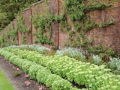 (Reginald_9) Tags: 2013 ireland august kylemoreabbey garden