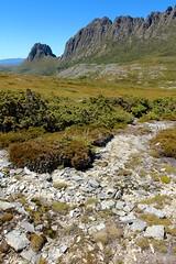 Cradle Plateau (Caleb McElrea) Tags: cradlemountainlakestclairnationalpark cradlemountain unesco worldheritagesite tasmaniansouthwestwilderness tasmania wilderness