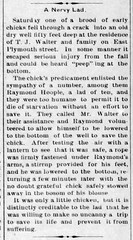 1910 - Ray Hoople descends well to rescue T J Walter chick - Enquirer - 24 Mar 1910