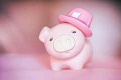 218/365 : Tiny Pink Hat (♥GreenTea♥) Tags: pig eraser pigeraser pinkpig pink iwako iwakoeraser iwakoerasers イワコー t1i canon canont1i canont1irebel canonrebel eos canoneosrebelt1i ef100mmf28macrousm canonef100mmf28macro hdr googlenikcollection nikcollection colorefexpro viveza hdrefexpro 365 photoaday pictureaday project365 365toyproject oneobject oneobject365daysproject 365the2018edition 3652018 day218365 365day218 day218 project365218 06august18 project36508062018 08062018 pinkhat hat tinyhat