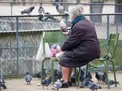 MrUlster 20170310 - Paris - P3103240 (Mr Ulster) Tags: pigeons france elderly park paris travel feeding