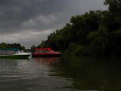 Danube Delta - Murighiol (cod_gabriel) Tags: murighiol danubedelta deltadunarii deltadunării danube dunăre dunare dunărea dunarea șalupe salupe donau duna tuna