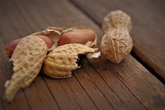 arachidi - peanuts (Angelo Petrozza) Tags: peanuts hmm macromondays natural mesh trama angelopetrozza hd35mmmacrolimited