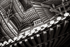 Tooth Relic Roof (claustral) Tags: 2018 singapore asia architecture building buddhism modern old monochrome bw v2 buddha tooth relic temple