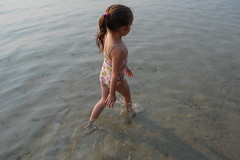 On marche à l'eau (tash.maxwll) Tags: beach water light lighting reflection reflect family smiles sand sandy playing play kid kids adventure vacation french english bilingual canada candid exposure natural nature wow beauty weeks wet soaked cool animals interesting