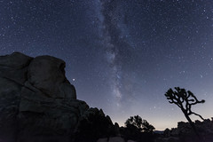 Milky Way at Intersection Rocks (SCSQ4) Tags: joshuatreenationalpark joshuatree intersectionrocks milkyway star astrophotography nightskies