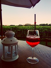 Spritz & vineyards