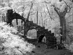 These Little White Fingers (elsewhereness) Tags: newhampshire newengland madamesherriecastle infrared blackandwhite bw trees leaves stairs ferns forest