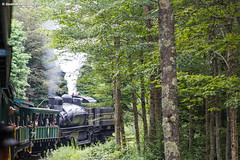 West Virginia Three-Step (nrvtrains) Tags: westvirginia cass logging cassscenicrailway shay steam durbin unitedstates us
