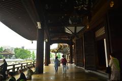 DSC_0006 (sxcxxhx) Tags: japan osaka kyoto hydrangea flower trip voyage 日本 大阪 京都 旅行