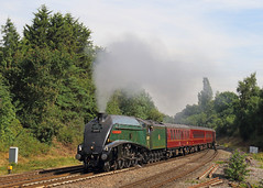 Southcote Junction (Treflyn) Tags: impending electrification lner gresley a4 pacific 60009 unionofsouthafrica final withdrawal southcote junction reading london victoria salisbury cathedralsexpress whitehorseslunchtimecircular charter