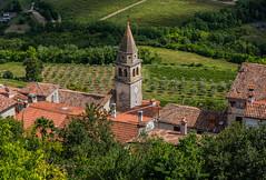 Croatia / Kroatien: Motovun (CBrug) Tags: croatia kroatien motovun montona kirchturm spire dächer roofs roof dach turm landschaft gras büsche gebäude