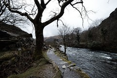 Beddgelert, Wales (lsullivanart) Tags: wales snowdon snowdonia northwales photography photographer capture shot shooter shoot snap snapshot picture image fuji fujifilm fujix fujinon fujixt2 xt2 fujinon1024 fujinonxf1024 fuji1024 fujifilm1024 winter snow rain autumn clouds weather moody dramatic atmospheric storm sky skies landscape hills rural fields parks valleys views natural beautiful scenery scenic estate trees grounds woods nature grass rocks ngc stream river water beddgelert fells countryside outdoor mountain mountainside tree