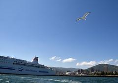 Three Seagulls (ogawa san) Tags: seagull otaru hokkaidou sea bluesky ferry boat flying
