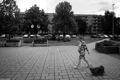 Chorzów 2018 (Tomek Szczyrba) Tags: bw monochrome city miasto town pies dog drzewo tree oczy eyes człowiek people zwierzę animal street photo streetphoto polska poland kobieta woman streetphotography fotografiauliczna blackandwhite noiretblanc enblancoynegro inbiancoenero czerń biel czerńibiel noir czarnobiałe