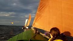 Sjægte racing/sailing in Hjarbæk (Jaedde & Sis) Tags: hjarbæk sailing sjægt sif me sweep friendlychallenges challengefactorywinner thechallengefactory perpetualwinner challengeyouwinner
