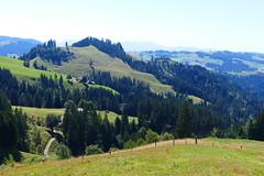 bei Grosshorbenschwand Eggiwil (Martinus VI) Tags: emmental eggiwil schangnau kanton de bern canton berne berna berner bernese schweiz suisse suiza switzerland svizzera swiss y180812 martinus6 martinus6xy martinusvi martinus 12082018