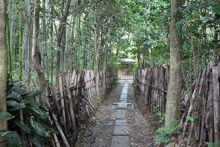 Chemin perdu à Arashiyama