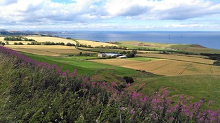 Berwickshire - From the A1107